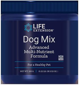 Dog Mix